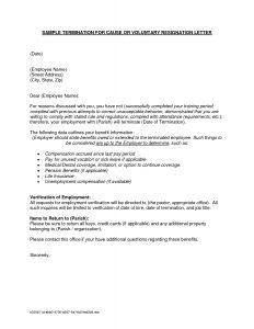 job offer letter sample employment separation letter sample regarding letter of employment sample template