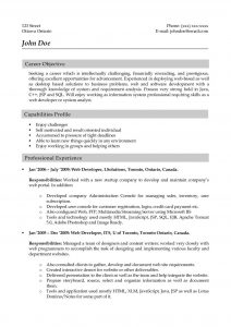 junior business analyst resume how to write a job winning resume good format career objective