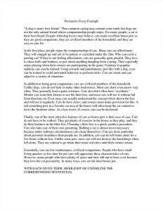 leadership essay example pro life essay