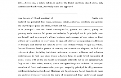 legal guardianship papers louisiana power of attorney