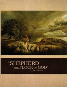 letter of harship shepherd flock cover ks