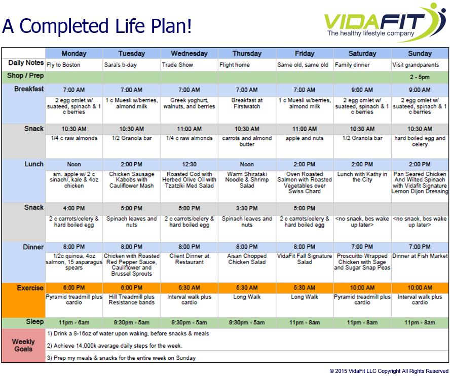 Life plan template template business for Accountable plan template