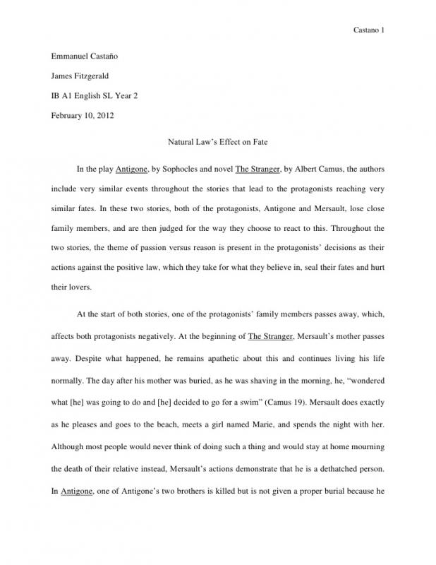 literary essay example
