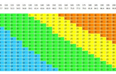 log book sample bmi chart