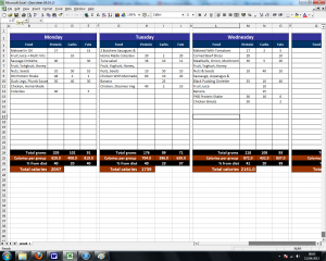 log spreadsheet template food diary