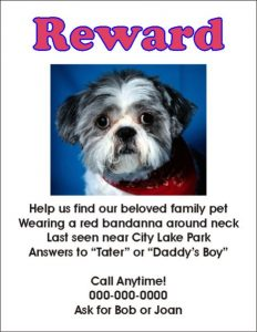 lost dog template lost dog flyer