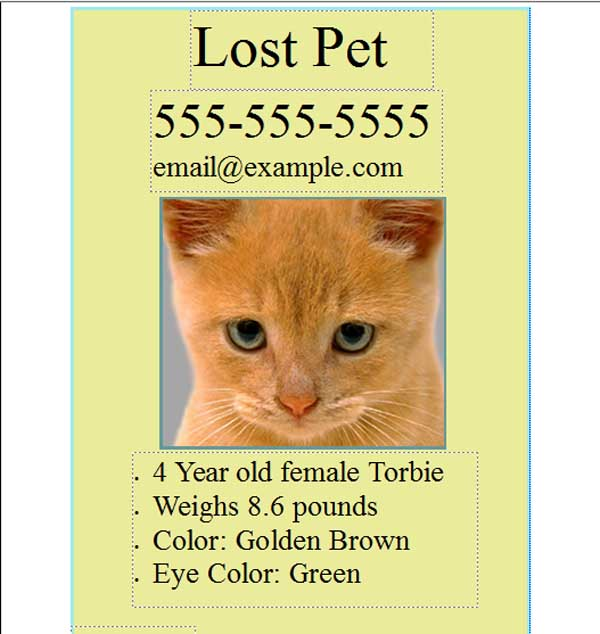 lost pet template