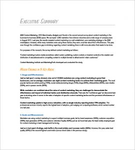 marketing plan executive summary bb marketing plan executive summary