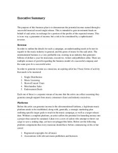 marketing plan executive summary music marketing plan executive summary