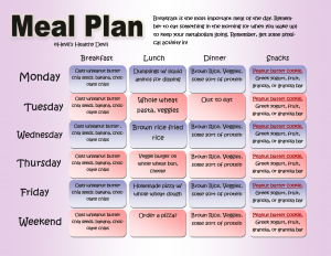 meal plan template pdf diet meal plan and exercise routine meal plan lkgupv