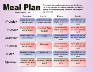 meal plan template word meal plan