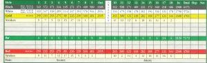 mini golf scorecard scan