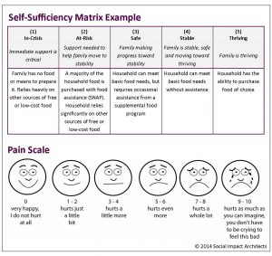 needs assessment example self sufficiency matrix