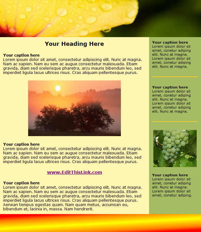 newsletters free templates