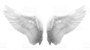 newspaper article format feathered white angel wings on white background picture id