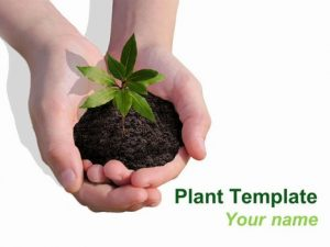 newspaper template powerpoint plant powerpoint template