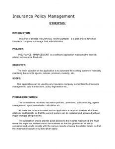 novel outline example academic project insurance policy management synopsis