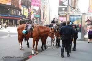 nyc police report dadbcf