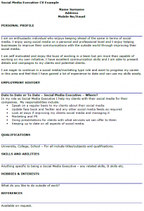 offer letter example social media executive cv example
