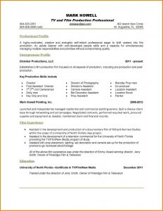 one page resume examples page resume templates one page resume examples for professional and entrepreneur profile with film experience