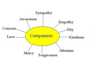 outline for writing a book compassionbrainstorm