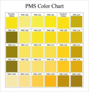 pantone color chart pdf pms color chart pdf