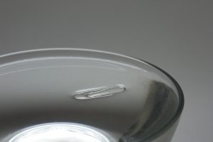paper clip holder water surface tension