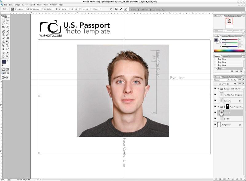passport photo template