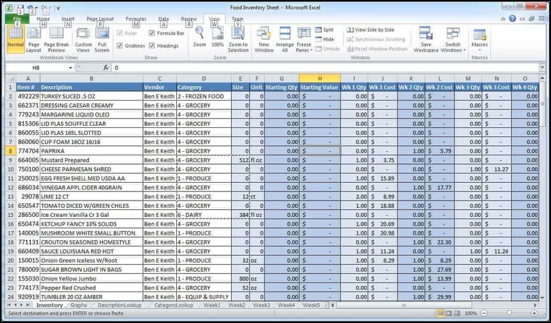 microsoft excel password manager template