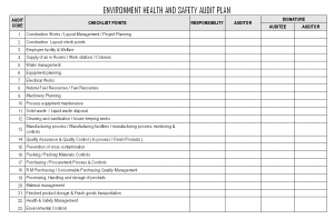pay stub templates environment health safety audit plan