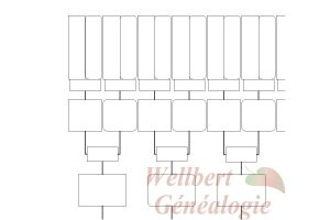 pedigree chart template family tree template generations printable empty to fill in oneself