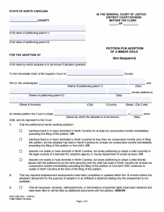 petition template word petition template adoption form e