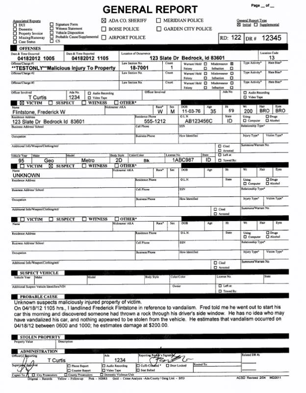Police Report Example  Template Business