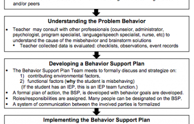positive behavior support plan orig