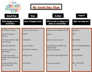 positive behavior support plan good day plan