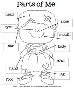 prek lesson plan templates dedffcfedaa body parts worksheet preschool parts of body preschool
