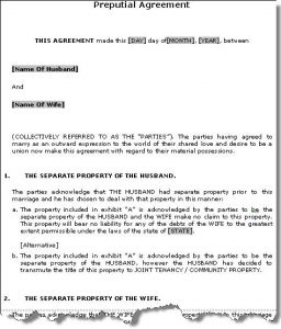 prenup agreement examples prenupsample