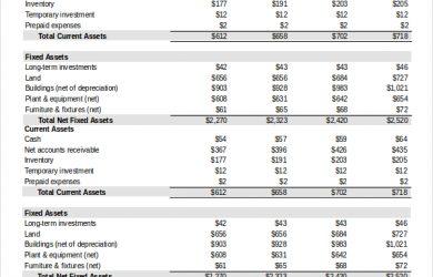 pro forma balance sheet template pro forma balance sheet template