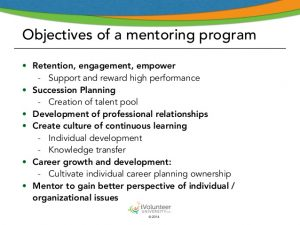 professional development plan samples introducing a volunteer mentoring program part i