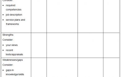 professional development plan template individual professional development plan