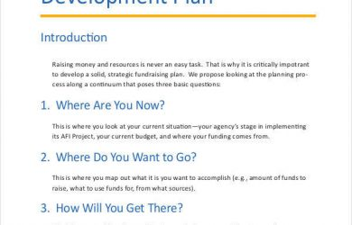 professional development plans example fundraising development plan
