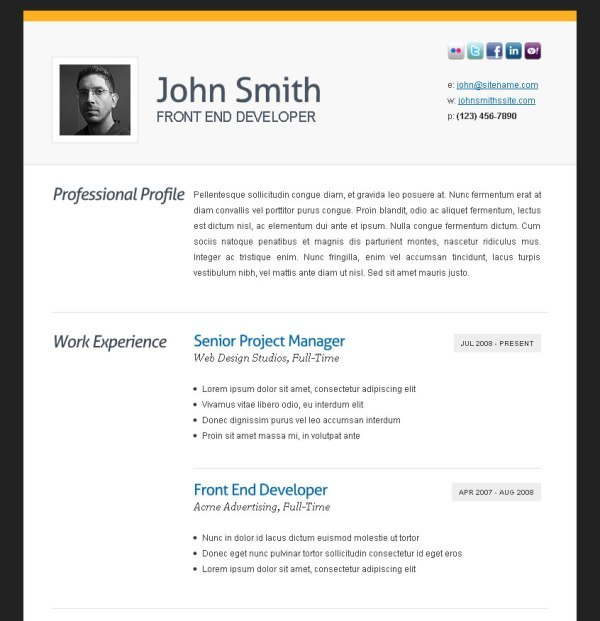 professional resume formats free download
