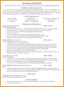 professional resume formats free download cv format it professional it professional resume examples template