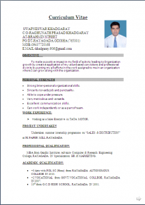 professional resume formats free download resume freshers format hlurvt