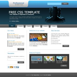 professional website templates templatemo professional