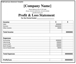 profit and loss form sample profit and loss statement