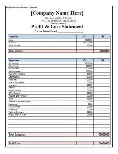 profit and loss statement form profit and loss