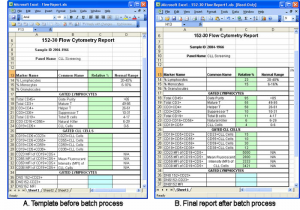 profit and loss templates excel report template hmfile hash bbd vpfemd