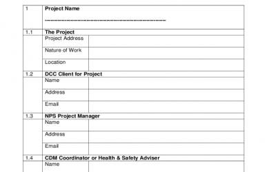 programme template word project brief sample d