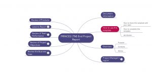project communication plan example prince (tm) end project report